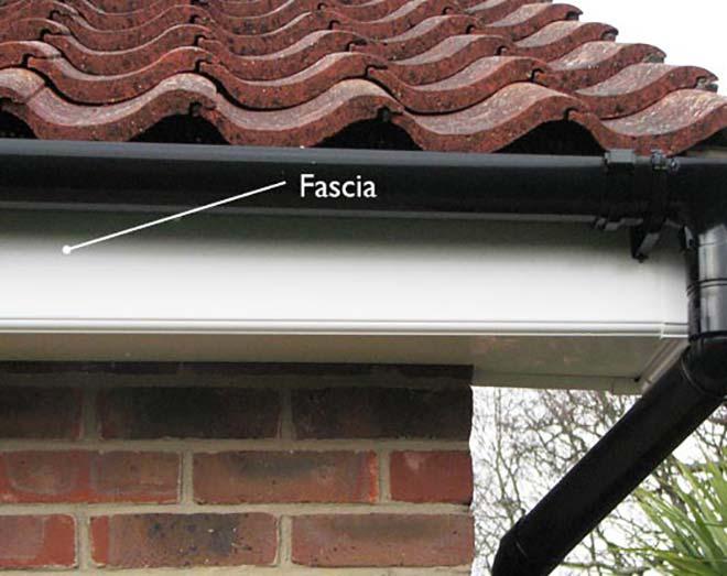 fascias-header
